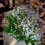 Belak Flowers 13