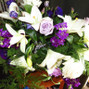 Sedona Mountain High Flowers 35