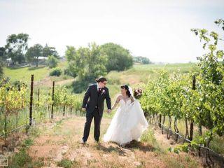 Kindred Vineyards 1