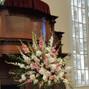 Kiwi Fleur 11