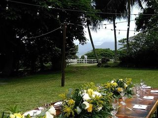 Hawaii Tents and Events 1