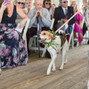 Amanda Rose Weddings & Events 10