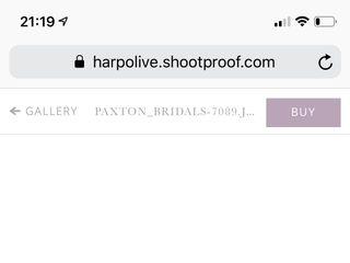 Harp & Olive 1