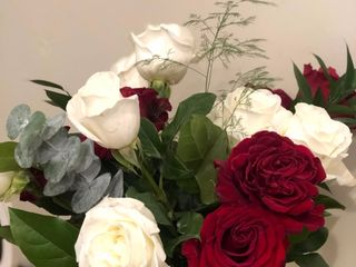 HEB Blooms 1