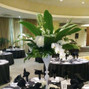 M.E.I. Floral Designers & Event Planners 9