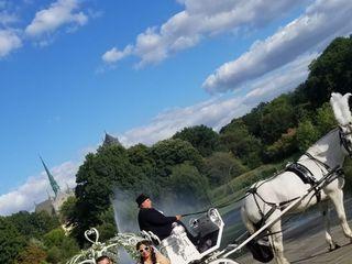 Dream Horse Carriage Company 1