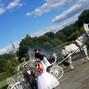 Dream Horse Carriage Company 5