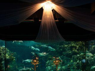The Florida Aquarium 3