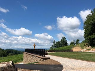 Point Lookout Vineyards 5