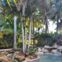 Secret Gardens Miami 7