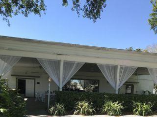 Davis Islands Garden Club 5