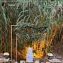 Golden Apple Weddings 11