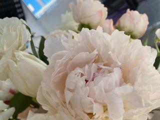 Flower Allie 1
