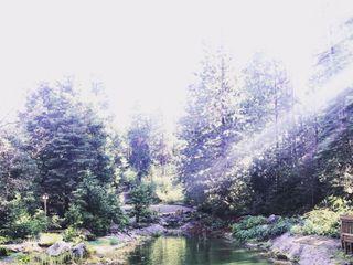 Paradise Springs 3