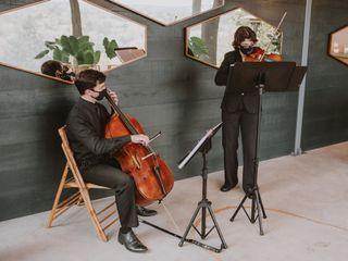 J&K Strings 3
