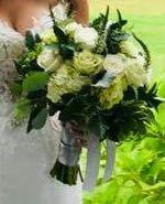 Katydid Flowers 5