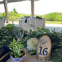 Cozy Caterers 18