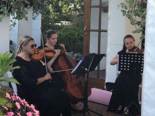 Ceremonious Strings LLC 1