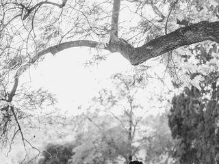 Lorin Kelly Photography 5
