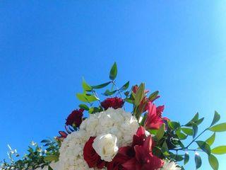 Genesis Floral 7