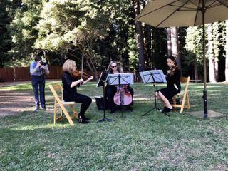 Corelli Strings 3
