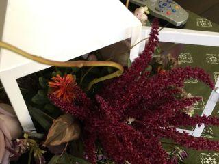The Flower Petaler 5