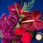 Rosehip Flora 12