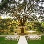 Live Oak Plantation 19
