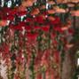 Sedona Mountain High Flowers 45