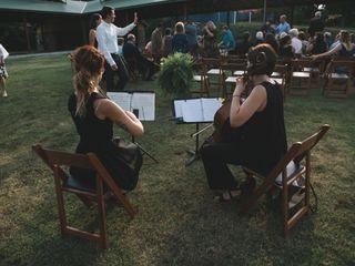Petals String Duo 2