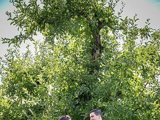 Mt View Orchards Weddings 3