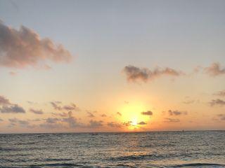 Palm Island Resort 6