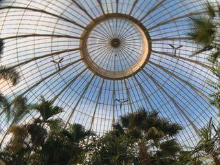 The Botanical Gardens 6