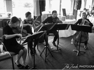 AVIVA Strings 2