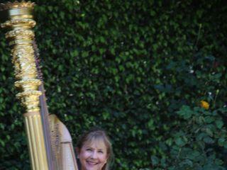 Orange County Harpist 1