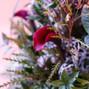 Floral V Designs 14