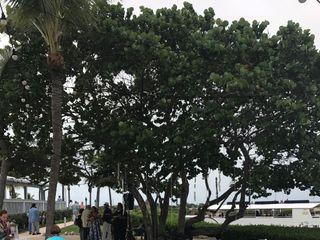 Hawks Cay Resort 5