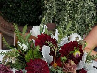 Robinson's Flowers 3