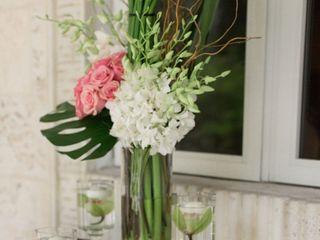 Kitanim Flowers 4