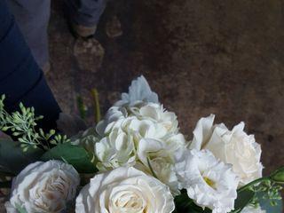 Katydid Flowers 6
