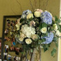 Arcadia Floral Co. 15