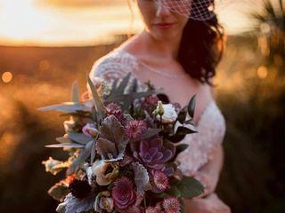 Alisa Sue Photography 6