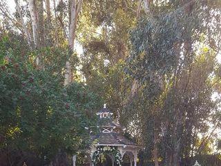 Twin Oaks House & Gardens 2