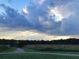 Starlight Meadow 2