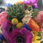 Robertson's Flowers & Events 23