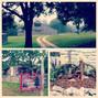 Cedar Springs Farm 8