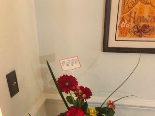 Black Iris Floral Events 1