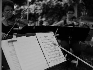 Camerata String Quartet 7