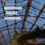 Planterra Conservatory 8
