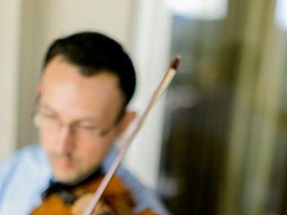 Elegance String Quartet 7
